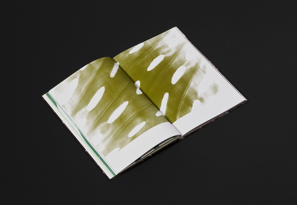 Adrien Missika – Botanica - © Maximage